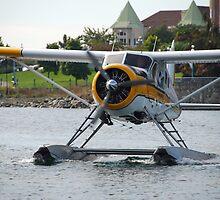 Kenmore Air DHC-2 deHavilland Beaver by John Schneider