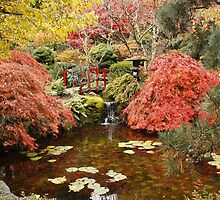 Japanese Garden in the Fall, ( please view large ) by AnnDixon