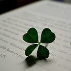 Luck of the Irish by Ginger