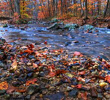 Creek In Fall Season by Michael Mill