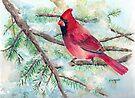 Winter Cardinal by arline wagner