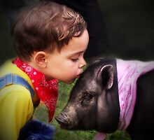 """""""A Boy And His Little D-o------- Pig?"""" by Melinda Stewart Page"""