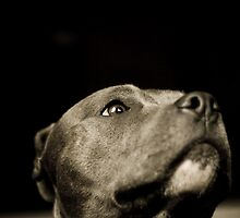 Is this my best side? by Bec  Brindley