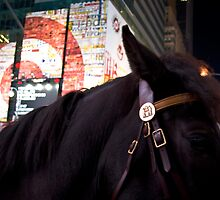 Horse in Time Square by AmyRalston
