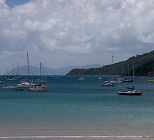 Airlie beach harbour by Anthony Wilson