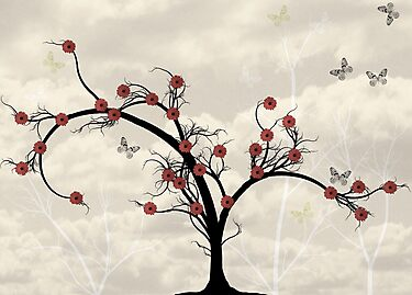 * butterfly tree * by franzi