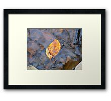 after their fall he sheltered her Framed Print