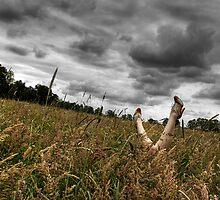 Allergique. by Manisch