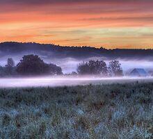 The Fog Beam by Deri Dority