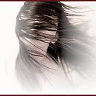 soft wind by Chaharra Gilman