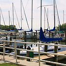 Safety Harbor Marina  by Ilene Clayton