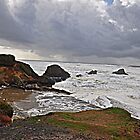 Cloudy Oregon Coast  by Judy Grant