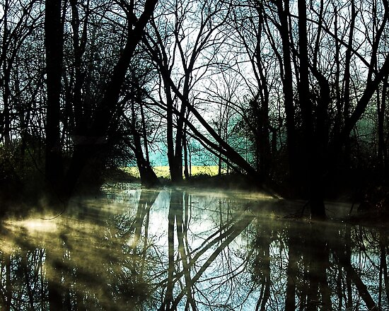 Reflections Of  A Cold Dark Winters Day by NatureGreeting Cards ©ccwri