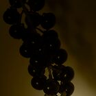 Fruits in shade by jayant