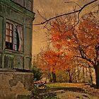 Rustic by Milos Markovic