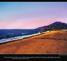 Baja - Desolated Splendor by Nadya Johnson