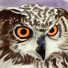 African Owl (eagle owl) by Marilyns