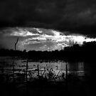 Eye of the Storm by Bob Hortman