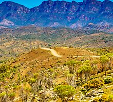 South Australia - Flinders Ranges - Brachina Gorge drive 10 by Geoffrey Thomas