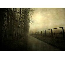 A gleam of light Photographic Print