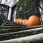 Stairway to Fall by J. Elise Van Pool