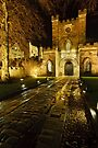 Entrance to Durham Castle by David Lewins