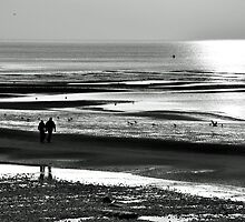 Walking on the Beach by David Bradbury