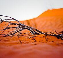 Simpson Desert - Living on the edge by livingontheedge