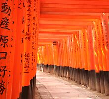 Fushimi Shrine by miall
