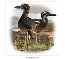 BEACH THICK-KNEE #2 by owen bell