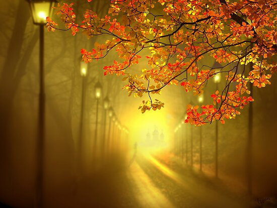 Into The Light by Igor Zenin