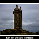 scrabo tower by rosscaughers