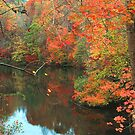 AUTUMN,LAKE by Chuck Wickham