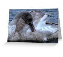 There once was an ugly duckling....... Greeting Card