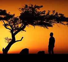 """Deep Thought""Dog Rocks,Bateford ,Geelong. by Darryl Fowler"