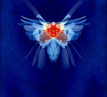 the moth - blue (nature serie) by Aimelle
