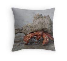 Incognito Throw Pillow