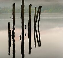 A POST OR SEVERAL by STEVE  BOOTE