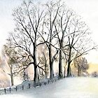 Winter trees by SuzanAlmond