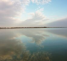 A Near Perfect Mirror by Alexander Brown