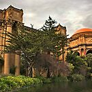 Palace of Fine Arts, San Francisco by Philip James Filia