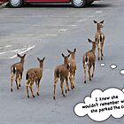 Parking Lot Woes by bicyclegirl