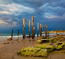 Port Willunga Ruins by Darryl Leach