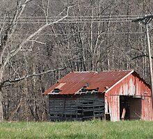 Old Barn in Cataract, IN by mltrue