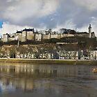 Chateau de Chinon by Leslie Nicole