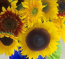 Mixed Sunflowers by Suzanne Lewis