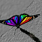 Stained glass butterfly by nphotographer22