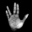 Live Long &amp; Prosper by Wayne Gerard Trotman