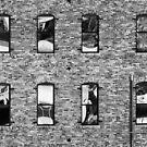 Brick by David Edwards