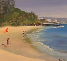 Putting out the Flags Rainbow Bay by Elaine Green